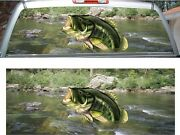 Large Mouth Bass Fish Fishing Swamp Rear Window View Thru Graphic Decal Wrap