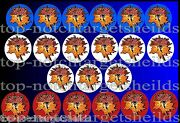 F-14 Pinball 21 Target Cushioned Pinball Armour Decals-choose Design 1 Or 2
