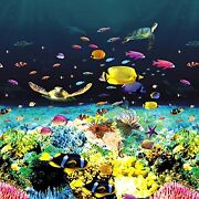 +great Barrier Reef - Hd Overlap Above Ground Pool Liner Premium, Eye Popping