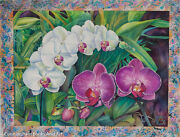 Orchid - Phalaenopsis Watercolour - Unmatted Us615