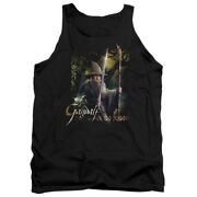 The Hobbit Desolation Of Smaug Movie Gandalf Sword And Staff Adult Tank Top