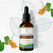 Secrets Of The Tribe Slippery Elm Tincture