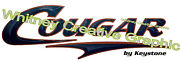 Cougar Rv Graphic Lettering Decal 53 X 17 Version 2 Dark Blue And Copper