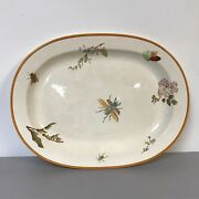 Rare Large 19th C Wedgwood Platter W/ Insect Garden Bug Decoration Ww582
