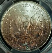 1885-o Pcgs Ms63 Silver Dollar Reverse Is Toned Golden Red Hue On Half Of Coin