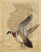Vintage Wood Duck Illinois State Map Art Print Hunting Calls Decoys Wall Artwork