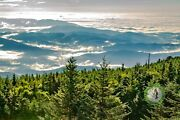 Original Print Of The Summit Mount Mitchellnc Above The Clouds Museum Framed