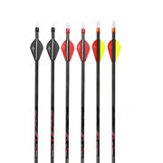 31 Pure Carbon Arrows Sp300 350 400 Tips Nocks Compound Bow Hunting Practice