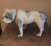 Old Early Toy English Bulldog On Metal Wheels Glass Eyes-leather Stud Collar