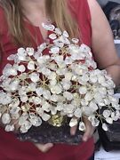 Big Hand Made Sculpture Of Crystal Quartz Tree 3 Kg = 6.6 Lbs Free Shipping