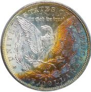1881 S Morgan Dollar Pcgs Ms64+ Nice Golden Tone Gorgeous Coin See Pics
