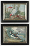 Angelo Maria Crivellid. 1730-follower Two Fine Miniatures With Birds 18th C.