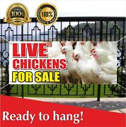 Live Chickens For Sale Banner Vinyl / Mesh Banner Sign Farm Animals Bird Poultry