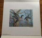 Wtdstamps - 1983 Pennsylvania Duck Stamp Print Ned Smith With Stamp ---