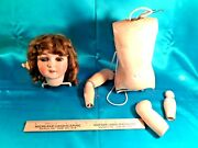 Antique Queen Louise Doll Parts, Sleep-eyes Head, Torso And Arms, Estate Find
