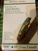 Field Guide To Jewel Beetles Coleoptera Buprestidae Of By Morgan D. Jackson