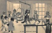 Louis Wain Cats In The Weighing Room Hartman Publisher Rare Embossed Postcard