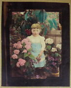 Photo Painted -board Many Photos Dand039junior 1900 Girl Dans Les Flowers
