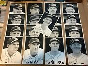 1942 Boston Red Sox Team Issue Wire Press Lot Qty 17 Black And White Photoand039s Ex+