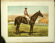 Veterinary / Farm Animals / Modern Practical Farriery Complete System 1898