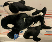 Lot Of 3 Seaworld Orca Killer Whale Plush 15and9 Stuffed Animal Toy Busch Garden