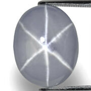 Gia Certified Sri Lanka Fancy Star Sapphire 16.55 Cts Natural Untreated Oval