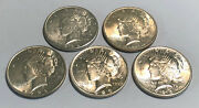 Lot Of 5 Au 1 Silver Peace Dollars Common Dates And Mint Marks