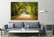 Charleston Sc Dirt Road Forest South Color Canvas Decor Art Print Room Painting