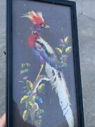 Vintage Bird Of Paradise Hawaiian Chinese Real Feather Wall Art Picture ❤️sj8j