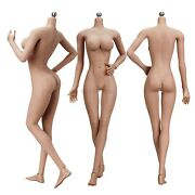 1/6 Female Large Bust Action Figure Body Seamless For 12 Tbleague Hot Toys Head