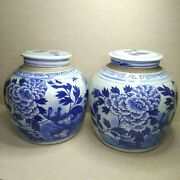 Antique A Pair Of Chinese Blue And White Porcelain Vases 19th-20th Century.