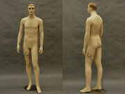Realistic Male Mannequin Shorter Than Average Md-7001f2