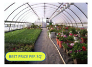 Greenhouse 18and039 X 96and039 Frames 4and039 Spacing Used