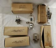 Lot Of 7 Us Army Signal Corps Radio Tubes 826 809 Ckr-832 Tw-75
