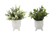 8 Faux Eucalyptus And Tea Leaf In Ivory Constellation Footed Ceramic Pots 2