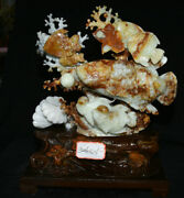 17.6 Good Chinese Art Natural Xiu Jade Carving Feng Shui Year Fish Lucky Statue