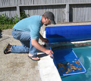 Poolmaster Cover Catch Debris Collector For Swimming Pool Solar And Winter Covers