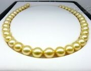 Perfect Round 1814mm Natural South Sea Genuine Gold Pearl Necklace Kt Aaa+