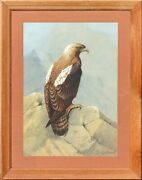 Donald Birbeck Xx 20th Century Eagle Signed D Birbeck Lower Right