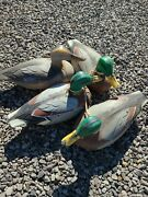 Vintage Lot Of 6 D-9-r Victor Duck Decoys By Woodstream 1967 ...used Condition