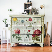 Furniture Decals Vintage Botanical Redesign With Prima Furniture Transfers