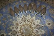 8 Vintage Duck Decoys Victor D-9 Animal Trap Company Of America With Stringer