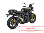 Exhaust Zard Steel-carbon Black Conical App. Triumph Street Triple 675