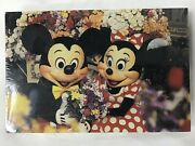 Set Of 50 Mickey And Minnie Enjoy The Flowers On Main Street Post Cards - Sealed
