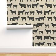 Wallpaper Roll Angus Cow Farm Animal Livestock Cattle Calf Cows 24in X 27ft