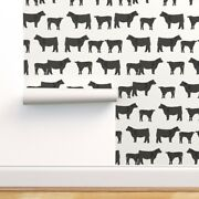 Wallpaper Roll Angus Cow Cows Farm Cattle Angus Cow 24in X 27ft