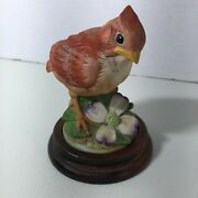Baby Cardinal Andrea By Sadek 6350 With Wooden Base Made In Japan Signed