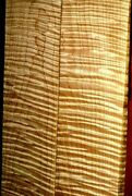 100 Boardfeet Heavy Figure Quilted Premium White Tiger Curly Maple Lumber