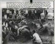 1962 Press Photo Caltech Students Have Mud Fight And Tug Of War, Paddock Field