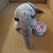 1997 Very Rare Ants Ty Beanie Baby, Errors On Tags And Stamp Inside Tush Tag